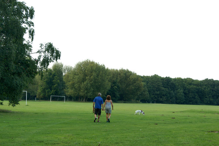 A pair of people walking a dog in a park.