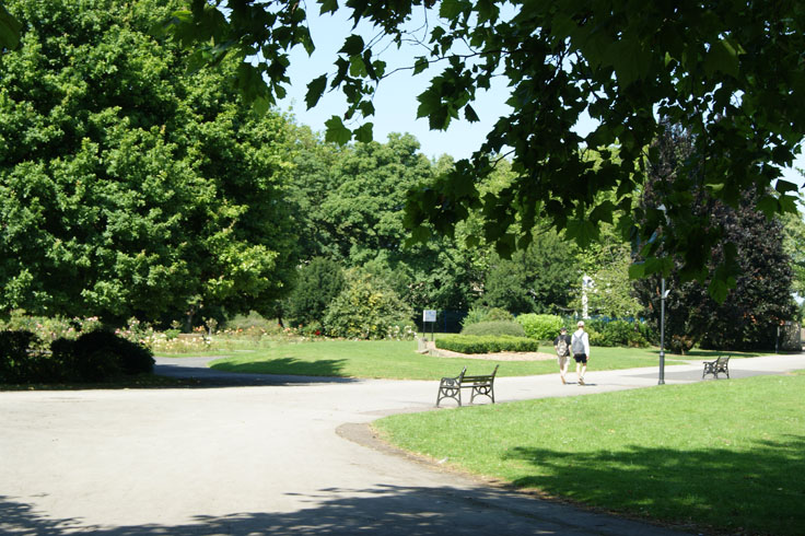 Two people walking through the park.