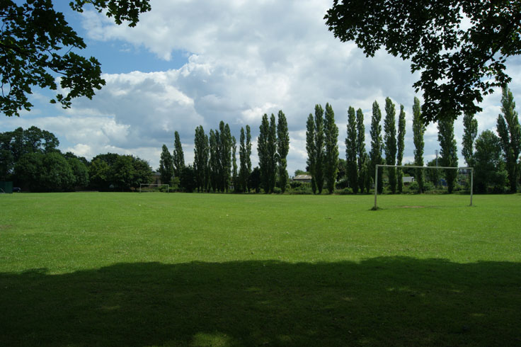 A playing field, with a row of trees at the back and goalposts at either side.