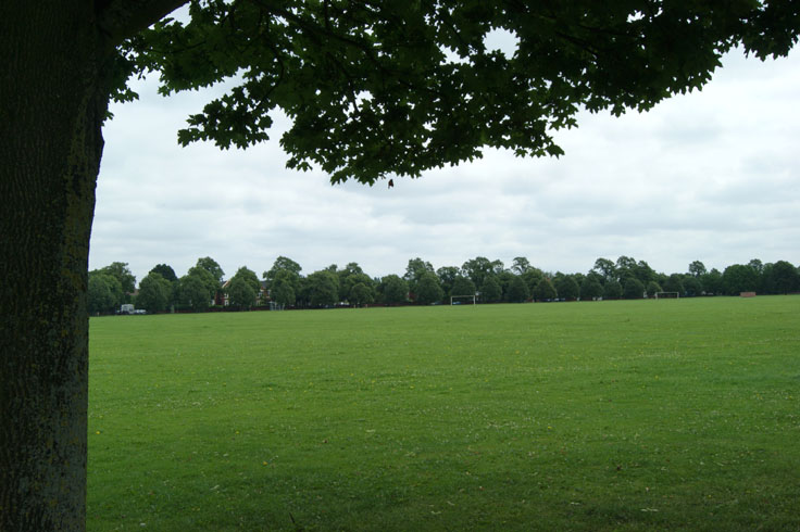 A large field with two football posts and a row of trees in the distance.