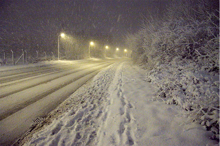 A road at night with a flurry of snow falling onto it